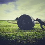 BLOGGING ABOUT BALES