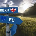 Brexit & Farming– All The Routes For Farmers Explained