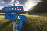 BREXIT & FARMING – ALL THE ROUTES FOR FARMERS EXPLAINED