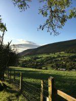 Calling Welsh Farmers – Welsh Farm Business Grant Applications Open!